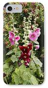 Hollyhock (alcea Rosea) IPhone Case