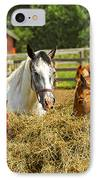 Horses At The Ranch IPhone Case
