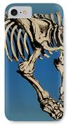 Megatherium Extinct Ground Sloth IPhone Case by Science Source