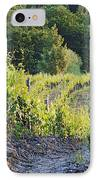 Rows Of Grapevines At Sunset IPhone Case by Jeremy Woodhouse