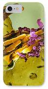 Bacteria Infecting A Macrophage, Sem IPhone Case by