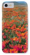 Californian Poppies (eschscholzia) IPhone Case