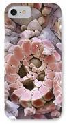 Fossil Debris In Chalk, Sem IPhone Case by Steve Gschmeissner