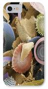 Fossilised Diatoms, Sem IPhone Case by Steve Gschmeissner