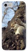 Grey Squirrel IPhone Case by Georgette Douwma