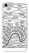 Illustration Of Stratified Squamous IPhone Case