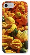 Pumpkins And Gourds IPhone Case by Elena Elisseeva