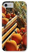 Pumpkins IPhone Case by Elena Elisseeva