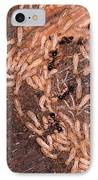 Termite Nest Reticulitermes Flavipes IPhone Case