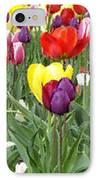 Tulip Garden University Of Pittsburgh  IPhone Case by Thomas R Fletcher