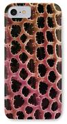 Diatom Alga, Sem IPhone Case by Steve Gschmeissner