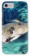 Map Pufferfish IPhone Case by Georgette Douwma
