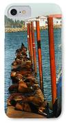 A Dock Of Sea Lions IPhone Case by Jeff Swan