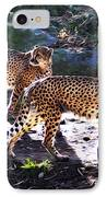 A Pair Of Cheetah's IPhone Case