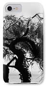 Alcatraz Tree IPhone Case by Ty Helbach