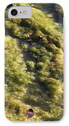 Algae Bloom In A Pond IPhone Case
