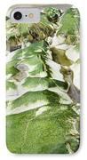 Algae Covered Rocks IPhone Case