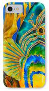Anse Chastanet IPhone Case