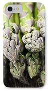 Asparagus IPhone Case by Elena Elisseeva