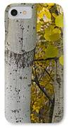 Aspen Panorama IPhone Case by Andrew Soundarajan