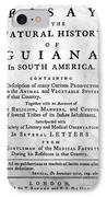 Bancroft: Title Page, 1769 IPhone Case