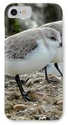 Beaks And Legs IPhone Case by Theresa Willingham
