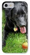 Black Lab Dog With A Ball IPhone Case by Elena Elisseeva