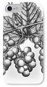 Botany: Grapes IPhone Case by Granger