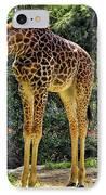 Bowing Giraffe IPhone Case by Mariola Bitner