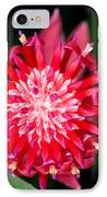 Bromeliad Bloom IPhone Case by Rich Franco