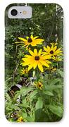 Brown-eyed Susan In The Woods IPhone Case by Gary Eason