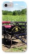 Buttonwood Farm Ct Usa IPhone Case by Kim Galluzzo Wozniak