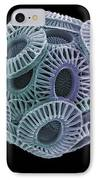 Calcareous Phytoplankton, Sem IPhone Case by Steve Gschmeissner