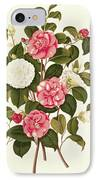 Camellia IPhone Case by English School