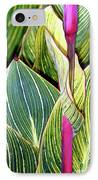 Canna Lily Foliage IPhone Case