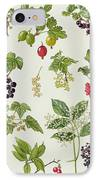 Currants And Berries IPhone Case by Elizabeth Rice