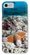 Cushion Star Starfish IPhone Case by Georgette Douwma