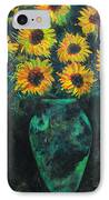 Darkened Sun IPhone Case by Carrie Jackson