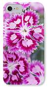 Dianthus Cranberry Ice Flowers IPhone Case