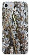 Dried IPhone Case by Shannon Grissom