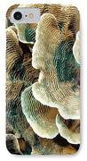 Elephant Skin Coral (pachyseris Sp.) IPhone Case by Matthew Oldfield