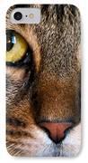 Face Framed Feline IPhone Case by Art Dingo