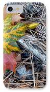 Fall Forest Floor IPhone Case by Will Borden