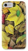 Fall Leaf Study IPhone Case by JQ Licensing