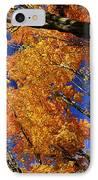Fall Maple Treetops IPhone Case by Elena Elisseeva