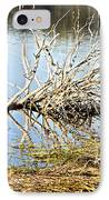Fallen Tree IPhone Case by Douglas Barnard
