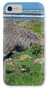 Feathers By The Sea Wild Female E African Ostrich Southern Race Cape Of Good Hope South Africa IPhone Case