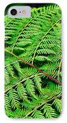 Fern Frond IPhone Case