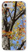 Fire Maple IPhone Case by Luke Moore