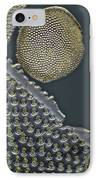 Fossil Diatoms, Light Micrograph IPhone Case by Frank Fox